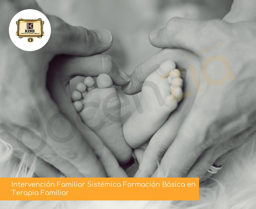 Intervención Familiar Sistémica Formación Básica en Terapia Familiar