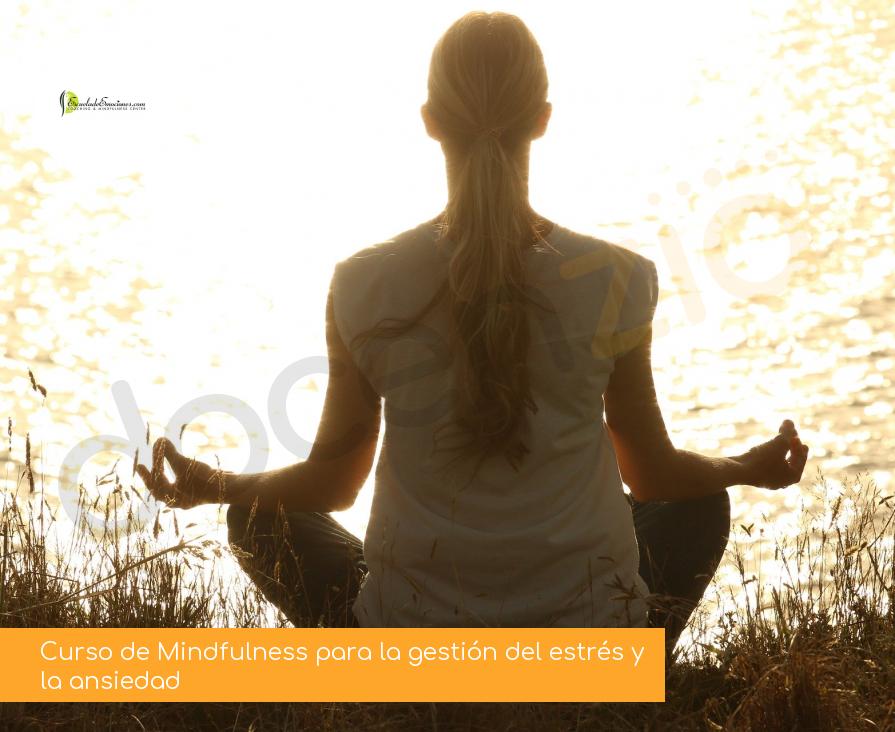 Curso de Mindfulness para la gestión del estrés y la ansiedad