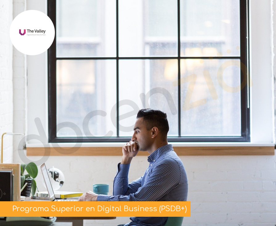 Programa Superior en Digital Business (PSDB+)