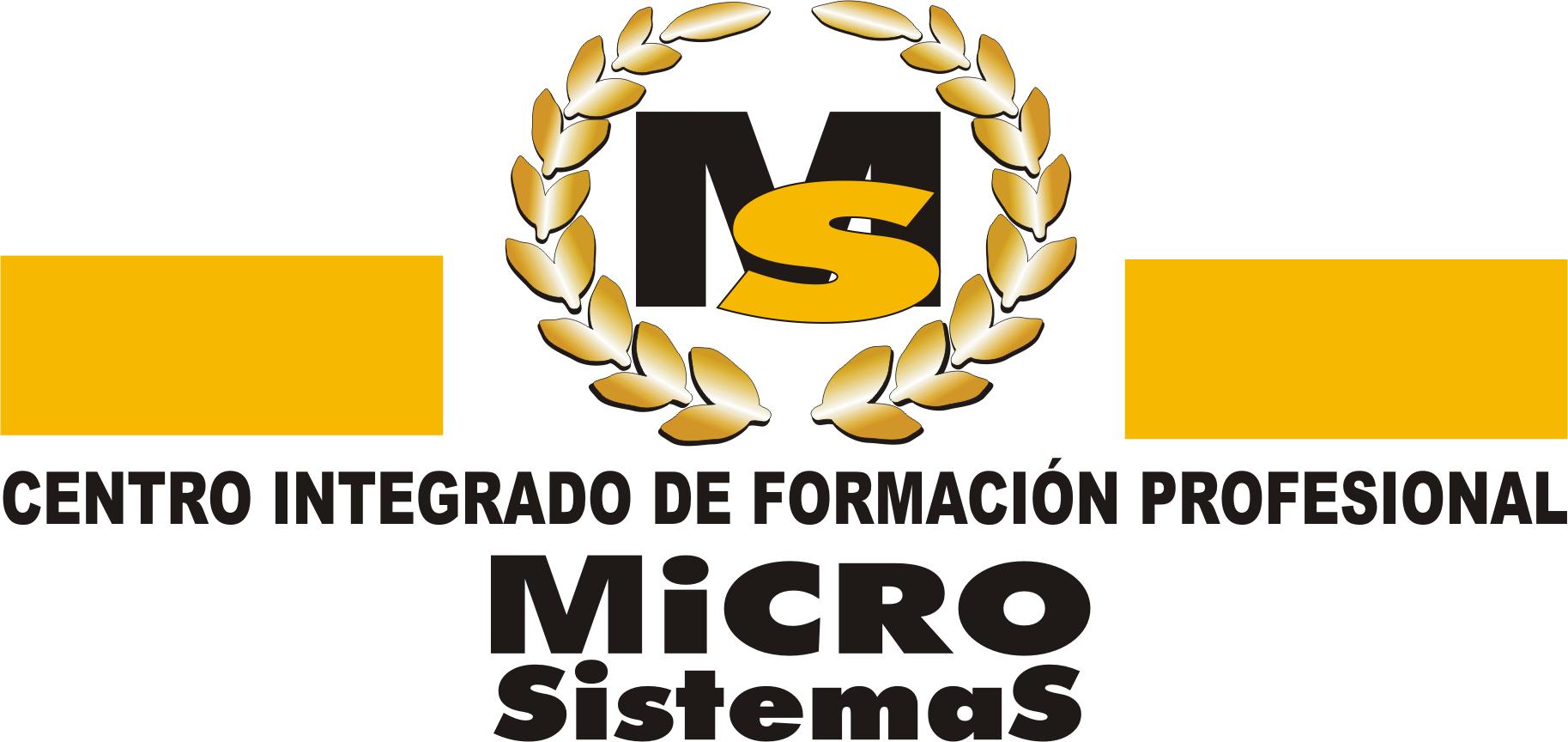 Logotipo Microsistemas Lanzarote