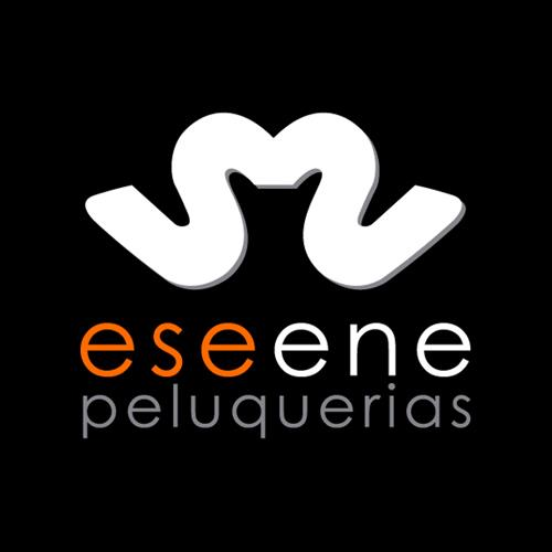 Logotipo Eseene